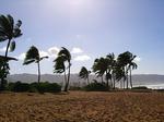 アリイビーチ2