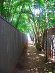 パパイロアビーチへのローカルアクセス
