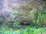シダの洞窟観光7