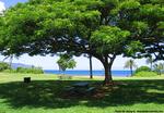 アリイビーチパーク1
