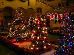 クリスマスツリーのコンテスト