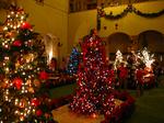 クリスマスツリーのコンテスト2
