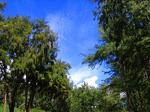 ワイマナロの空