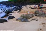 ラニアケアビーチ1