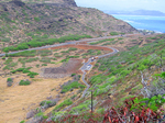 上から見たマカプウ岬のパーキング