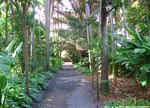 フォスター植物園2